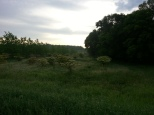 Around Belle Plaine MN Teien (28)