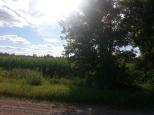 Around Belle Plaine MN Teien (40)