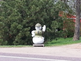 Roadside Greeter Minnesota River Scenic Road