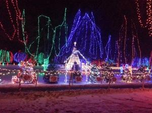 Christmas Holiday Lights - Teien (1)