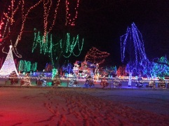 Christmas Holiday Lights - Teien (3)
