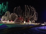 Christmas Holiday Lights - Teien (4)