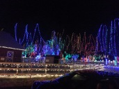 Christmas Holiday Lights - Teien (5)