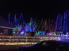 Christmas Holiday Lights - Teien (5)