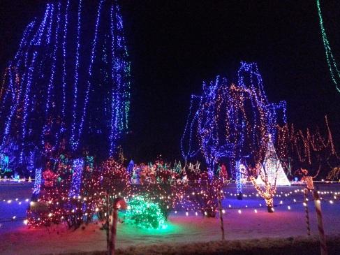 Christmas Holiday Lights - Teien (6)