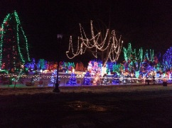 Christmas Holiday Lights - Teien (7)