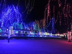 Christmas Holiday Lights - Teien (8)