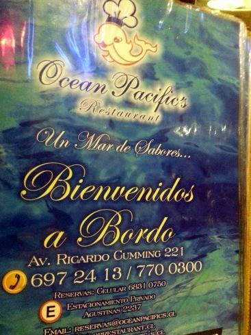 Ocean Pacifics Santiago Chile (7)